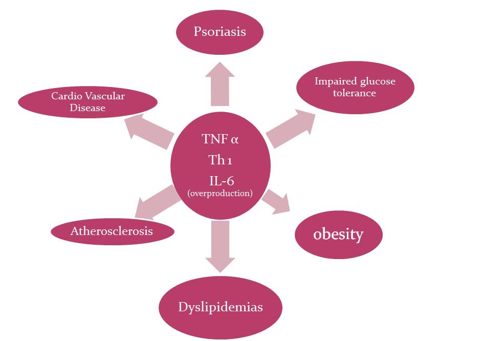 как быстро убрать лишний жир с живота